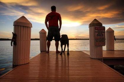 A dog was taken to her Farewell tour by his Master when diagnosed cancer