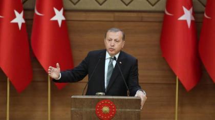 Erdogan back in Ankara as thousands hit by Turkey purge