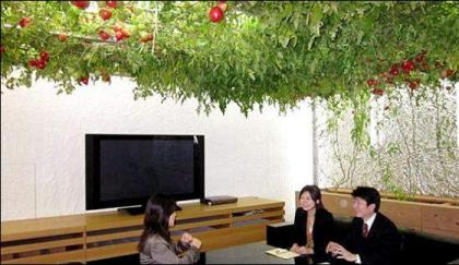 Japan Offices harvesting Fruits and vegetables on the walls