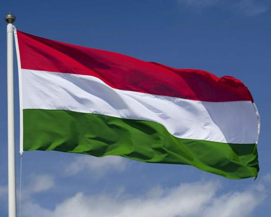 4 Hungarian army explosive experts killed in blast