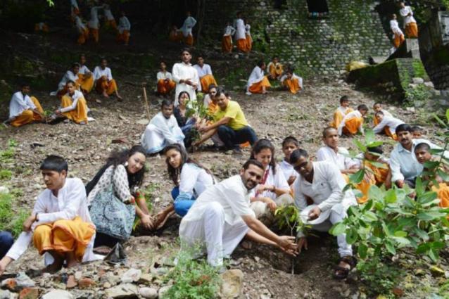 RCB starts Monsoon tree plantation