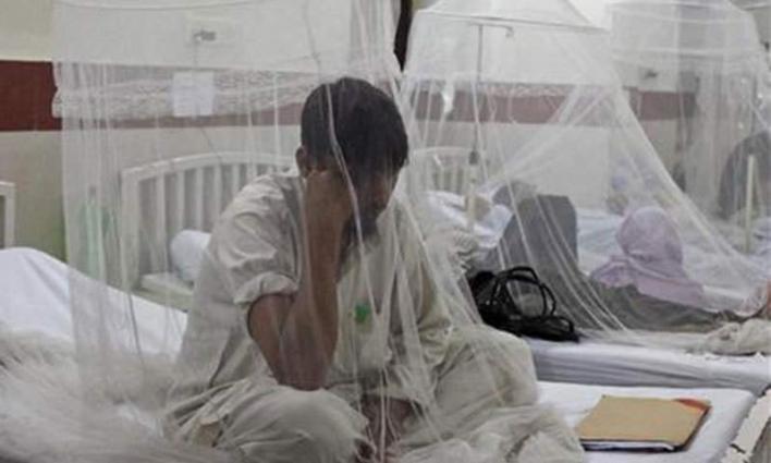 DCO orders solid measures against dengue