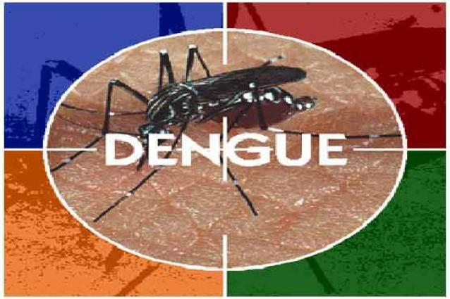 Anti-dengue day to be observed on 23rd