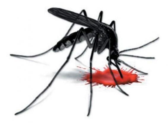 GCUF observes anti dengue day