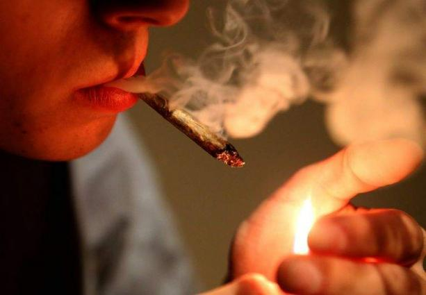 Italian MPs to debate controversial cannabis law