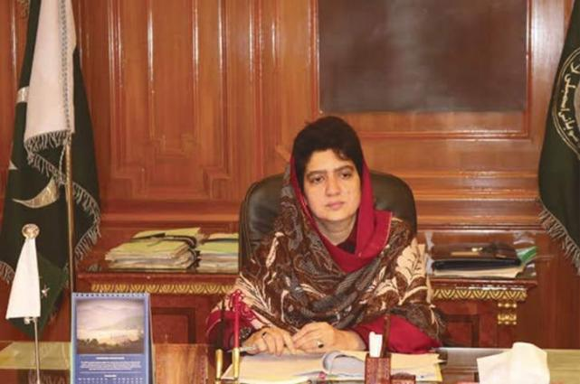 Gems, Jewelry business generating jobs for youth: Raheela