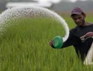1.6 mln ton surplus urea available in country