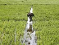 150 schemes of irrigation development to be completed in 2016-17