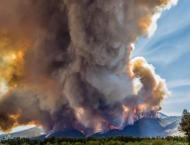 Climate change doubles US forest-fire burn areas: study