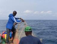 Guinea struggles to reel in foreign boats' illegal fishing