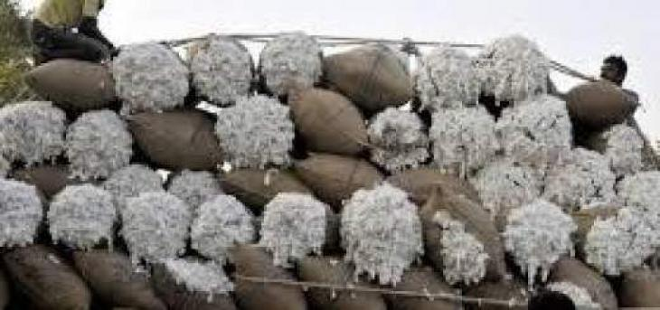 PCGA urges govt to ensure supply of registered cotton seed