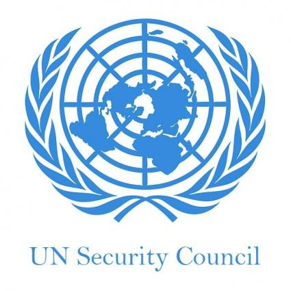 UNSC strongly condemns terrorist attack in Istanbul on New Year's Day