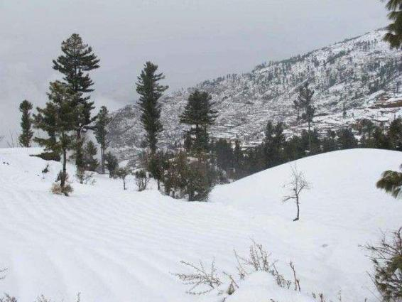 Rain, snowfall breaks dry spell in KP