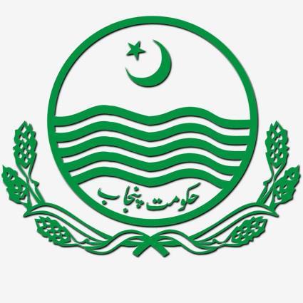 Punjab govt plans ADP in light of LG system