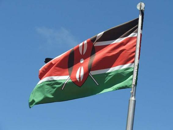 11 killed as overloaded minibus crashes in Kenya