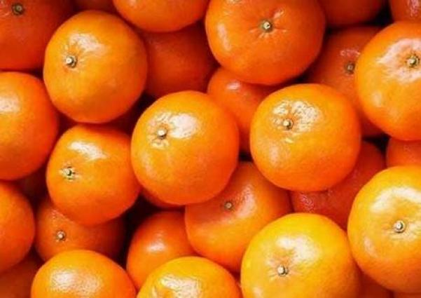 Kinnow growers appreciate rate fixing process