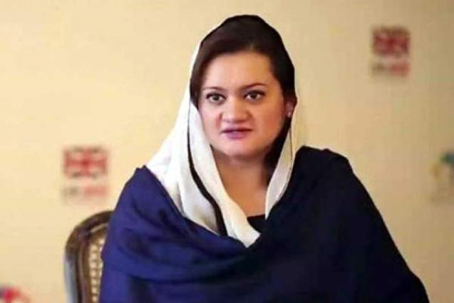 Imran has made a habit to bully national institutions: Marriyum