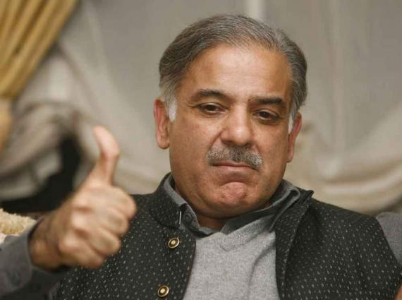 NAP must for establishing peace: Shehbaz Sharif