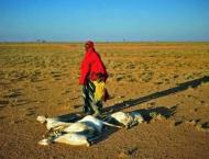 Somali president declares 'national disaster' over drought