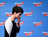Germany's divided anti-migrant AfD alarmed by poll dip