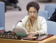 'Safe havens' are inside Afghanistan, not outside: Pakistan tells ..