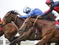 Racing: Horse wins 'wrong race' at 50-1