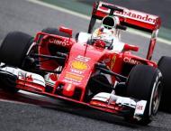 Formula One: Vettel takes Hungarian GP pole