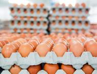 BASF to restrict use of egg scandal pesticide