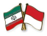 Iran, Indonesia navies to boost cooperation