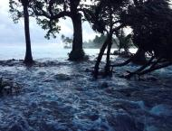 Pacific islands can't tackle climate change alone: World Bank