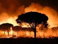 Around 500 evacuated due to wildfire in Spain