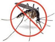 Dengue larva detected, factory owner booked