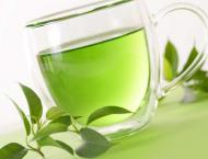 Green tea compound could help treat Down syndrome