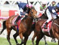 Racing: Rekindling leads Irish sweep at Melbourne Cup