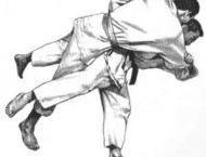 Quaid-i-Azam Games: Punjab's judokas claim five gold medals