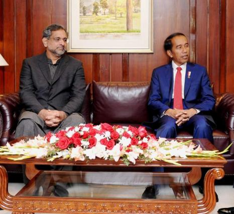 Pakistan, Indonesia agree to work for Afghan peace