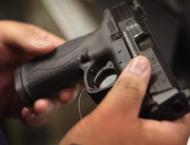 Gun control in the US: issues and proposals