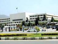 Senate committee discuss issue of public hanging
