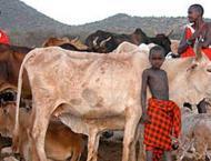 Kenya issues alert on foot and mouth disease outbreak