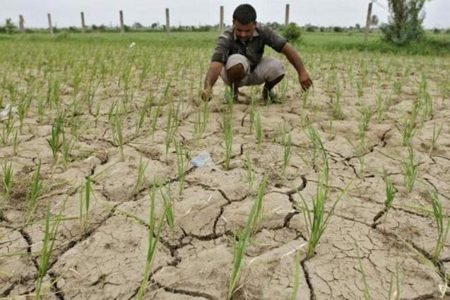 Climate change, land degradation, water scarcity big threats to agriculture sector: Expert