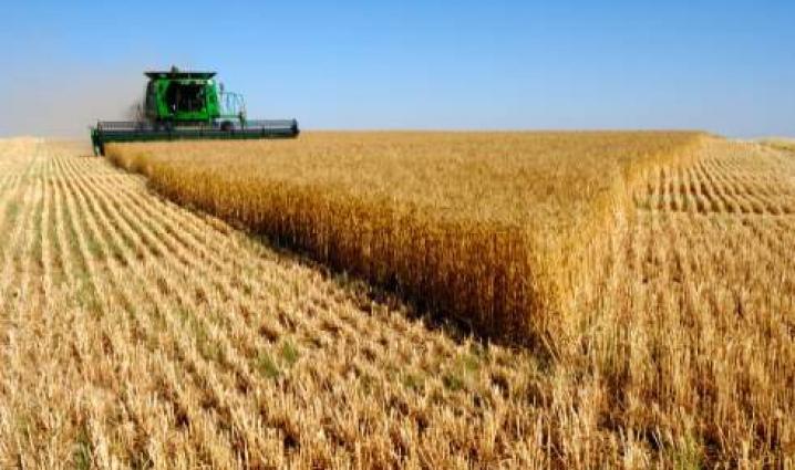 Канада наращивает экспорт продовольствия