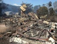 Australia bushfires destroy homes, kill cattle