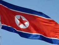 N. Korea denies sanctions prompted diplomatic thaw