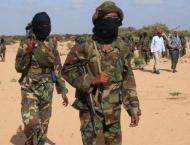 US military kills 2 Al-Shabaab militants in southern Somalia