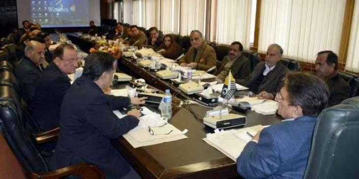 Azad Jammu & Kashmir Cabinet Development Committee Reviews
