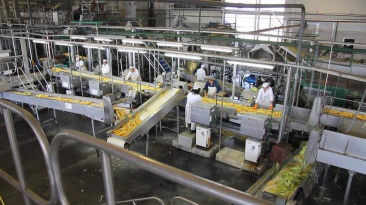 Chinese firms to establish bio-fertilizer processing factory in Laos