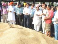 Monitoring teams to ensure wheat purchase