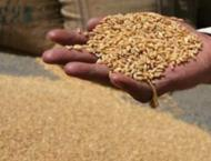 18 centers set up to procure 197,000 metric tons wheat from Jhang ..