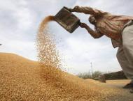Punjab Secretary Food Shouket Ali Khan food visits wheat procurem ..