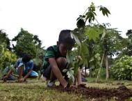 Increasing number of plant sapling to bring significant change in ..